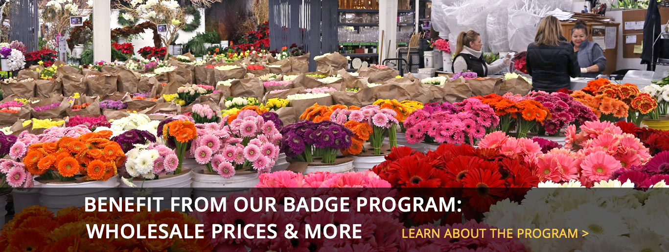 The los angeles flower market badger flowers mightylinksfo
